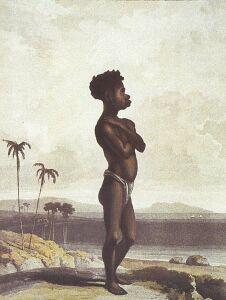 Papuas z Nowej Gwinei. Z 'Historii Jawy', monumentalnego dzieła, jakie napisał Raffles, pionier odkryć, założyciel Singapuru