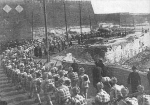 3 lutego 1949 r. Przed trzema dniami Pekin wpadł w ręce chińskich komunistów. Zaczyna się parada zwycięstwa