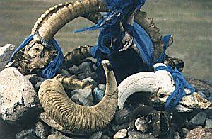 Duch szamanizmu jest wciąż obecny w wierzeniach współczesnych Mongołów