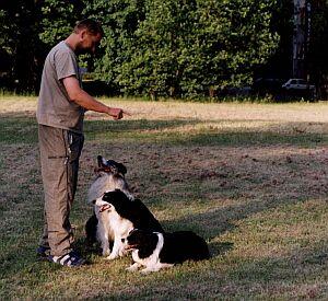 Pokaz tresury psów myśliwskich w wykonaniu Tomasza Pecolda
