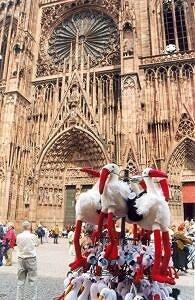 Symbol Strasbourga (bocian), a w tle Katedra Notre Dame