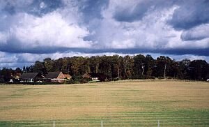 Typowy pejzaż zachodniego wybrzeża Szwecji