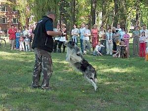 W programie Majówki znalazły się m.in. pokazy tresury i sprawności psów
