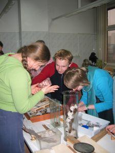 Warsztaty zoologiczne na Wydziale Biologii i Ochrony Środowiska