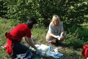 Dr Barbara Tokarska-Guzik (z prawej) podczas zbierania materiału w terenie w ramach programu monitorowania wędrówek inwazyjnych gatunków roślin z biegiem rzek
