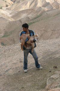 Dobry pasterz (Pustynia Judzka)